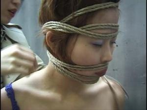 Ibarako: New World Japanese Bondage
