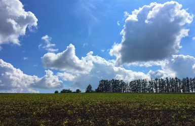 hokkaido-countryside