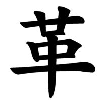Japanese Word for Leather