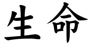Japanese Word for Life