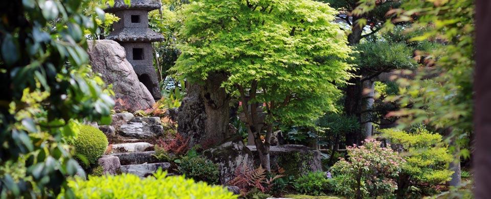 hagi_kikuya_garden2_sr
