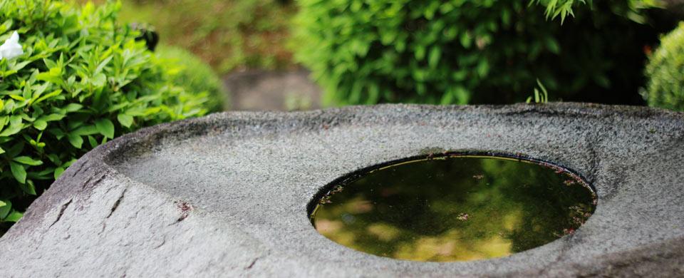 hagi_kikuya_garden_mr