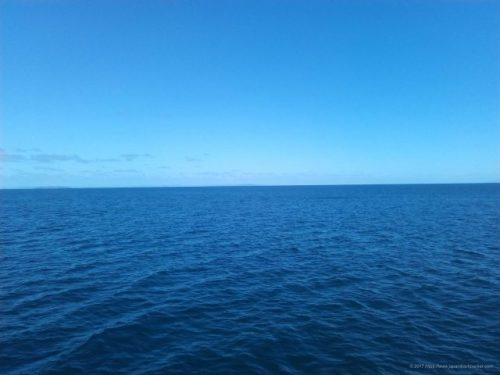 ニュージーランドの海