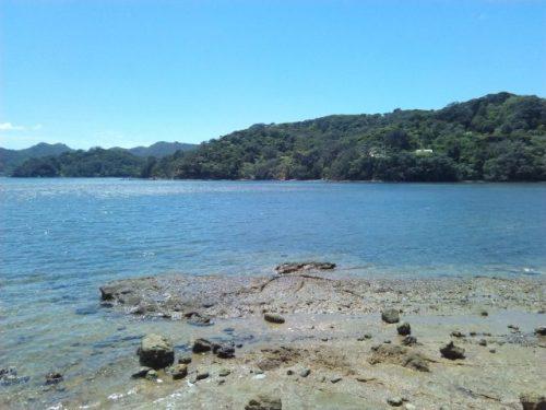 Tryphena港グレートバリア島