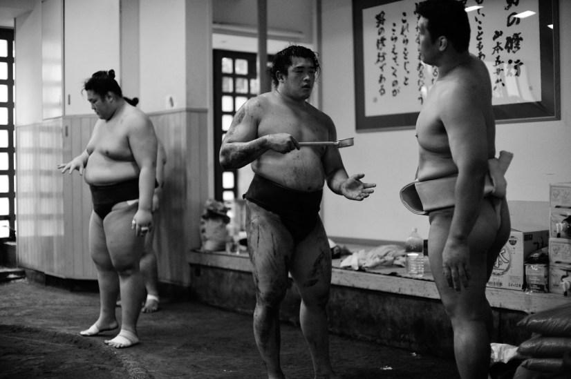 ALF_8552_sumo-small