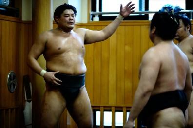 ALF_8695_sumo-small