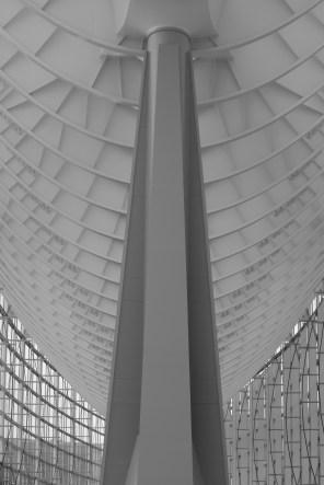AG-architecture-walk_ALF_2737
