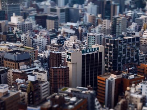 www-AG-tokyo-dinkytown_9335783