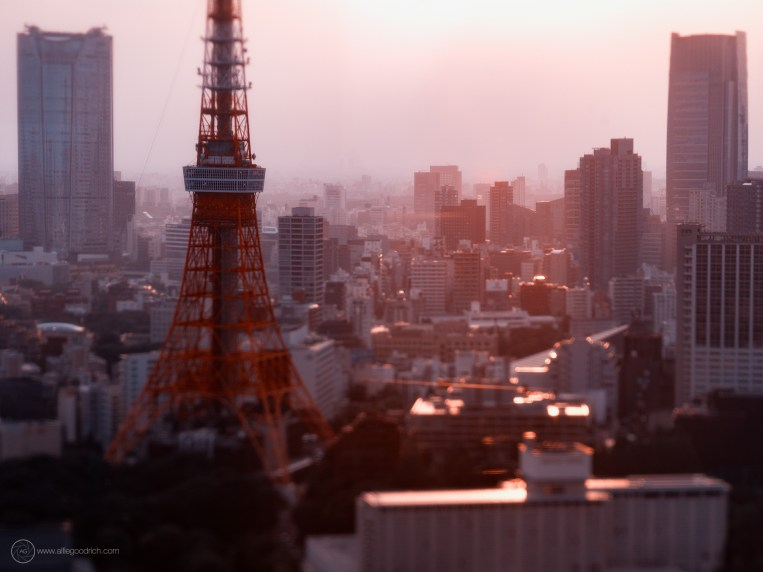www-AG-tokyo-dinkytown_9335874a