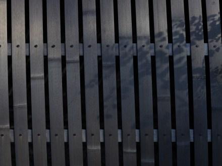 AG-Hasselblad-tokoyo-photowalks_9339652