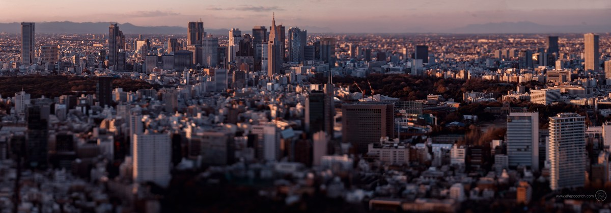A trip up the Mori Tower to Tokyo City View