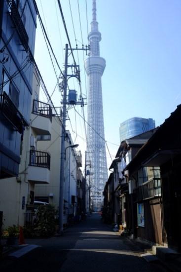 tokyo-photowalks-nethertokyo__DSF3903