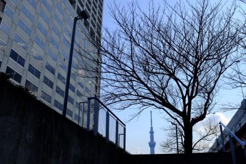 tokyo-photowalks-nethertokyo__DSF3969