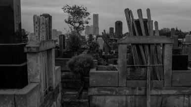 AG-tunnel-cemetery-walk-2223