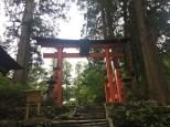 Torii gate of Haguro-san