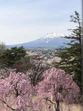 view of Iwaki from Hirosaki castle