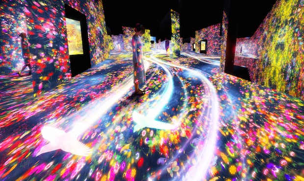 mori building teamlab digital art museum borderless immersive