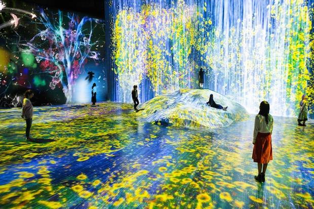 Image result for the immersive digital art tokyo