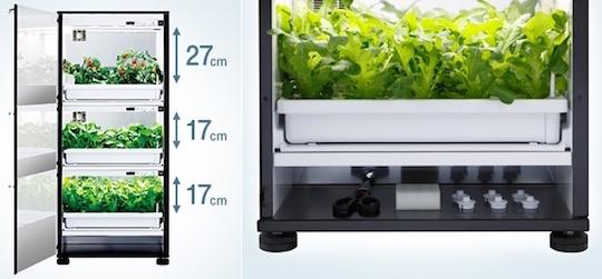 Hydroponic Grow Box Australia