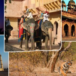 Golden Triangle - Ranthambore Tour