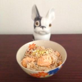 Riz cuit au saumon