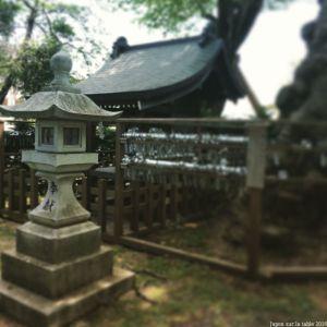 shinto (4)