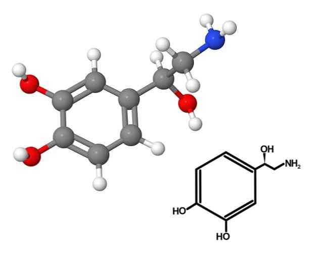 النورادرينالين والاكتئاب أعراض لزيادة هرمون النورادرينالين