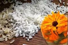 rice-498688_960_720-copy