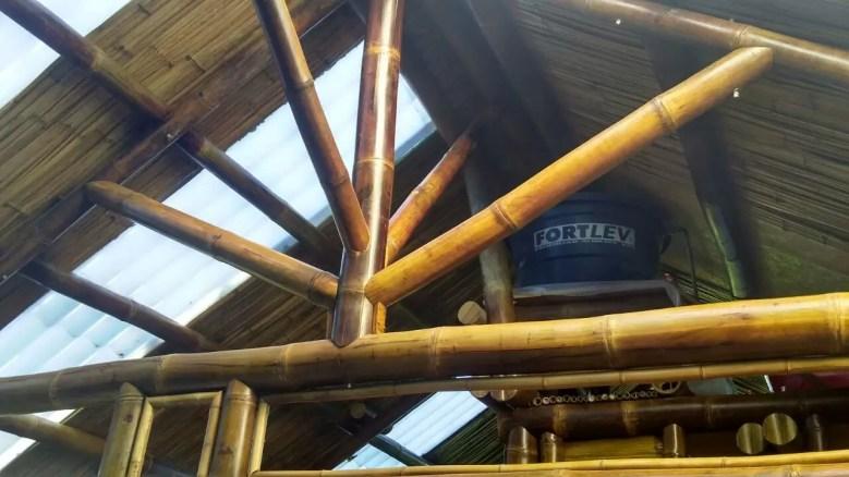 Bambu a vista fica lindo