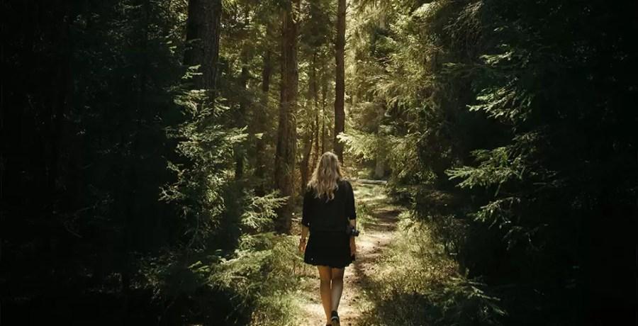 banho de floresta