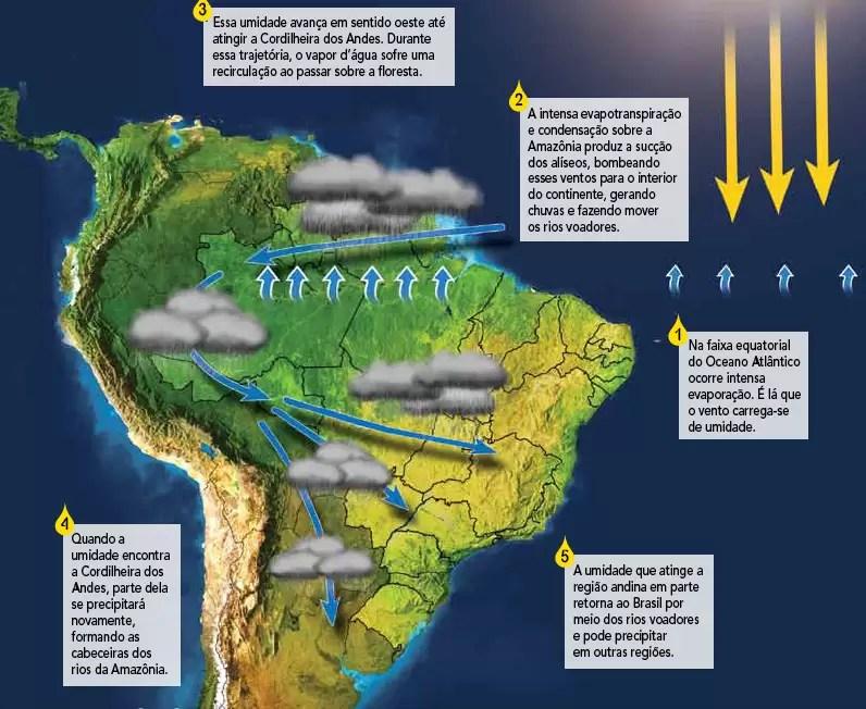 4 motivos do porque a Amazônia é vital para o mundo ⋆ Jardim do Mundo
