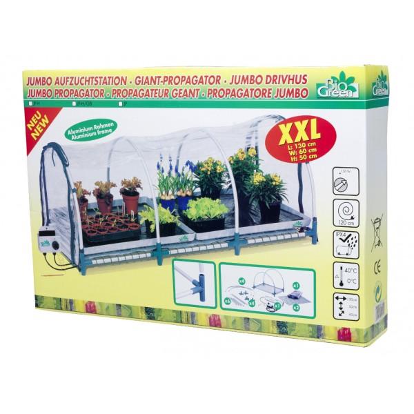 jardinage interieur