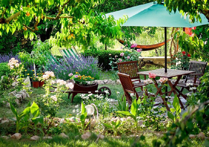 petit jardin comment l amenager