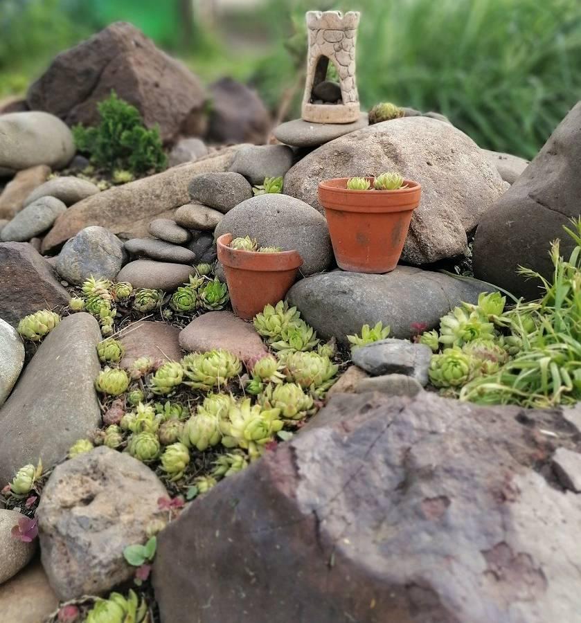 Amenagement D Une Butte Dans Le Jardin Jardiner Malin
