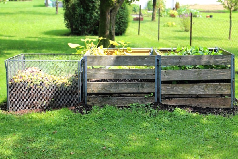 compost jardin