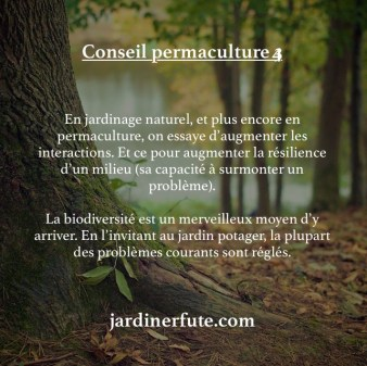 association culture défi permaculture conseil