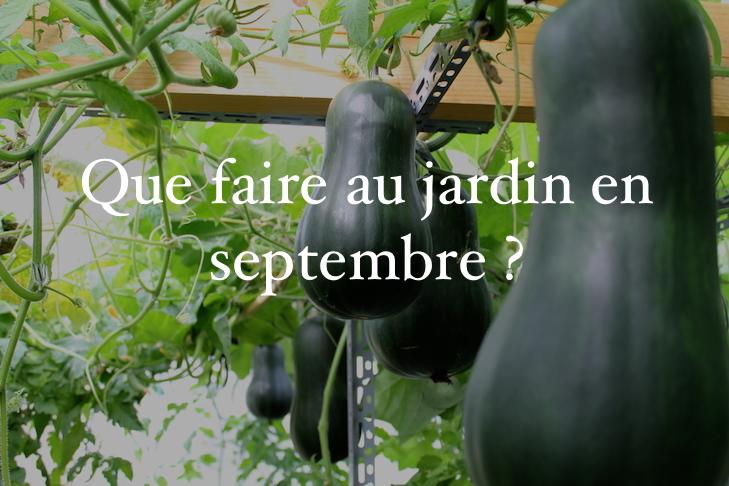 que faire au jardin en septembre sucrine du berry