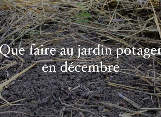 jardin potager décembre