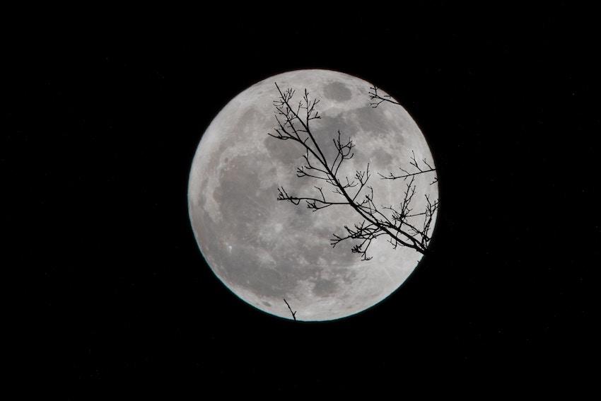 Jardiner avec la Lune, mythe ou réalité ?