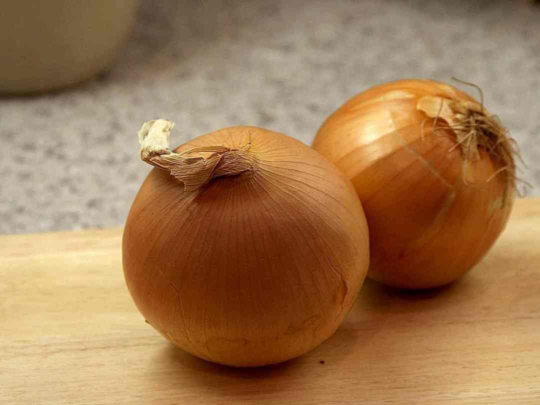 Onions can be grown in an urban garden