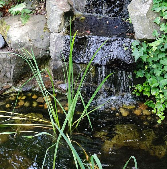 bassin de jardin a mios 33