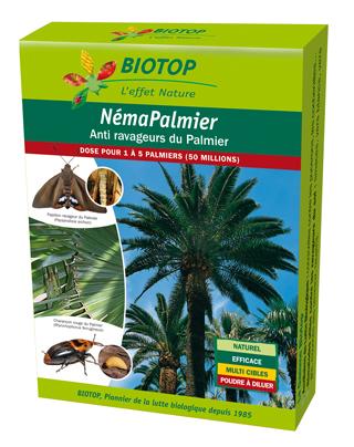 NEMAPALMIER-50M-3D_Biotop