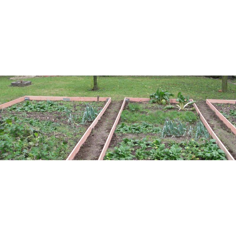 potager avec plaque de jonction jardin