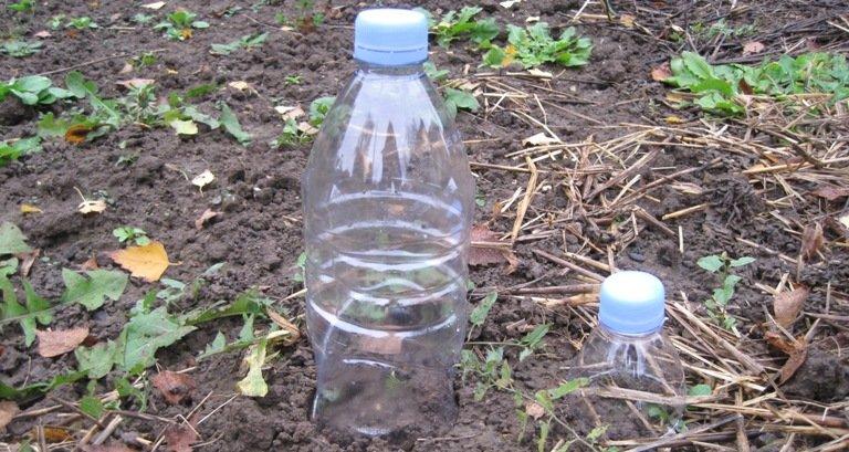des bouteilles d eau en plastique
