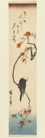 Brooklyn_Museum_-_Bunting_on_a_Maple_Branch_-_Utagawa_Hiroshige_(Ando)