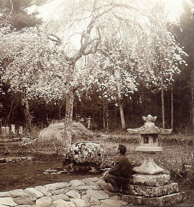 histoire du jardin japonais jardin