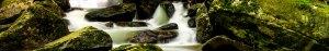 Cascade d'un ruisseau entre les rochers couverts de mousse.
