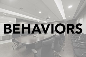 Behaviors DISC TTI Success Insights