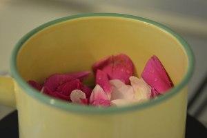 Rosenbladsavkok