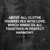 colossians314